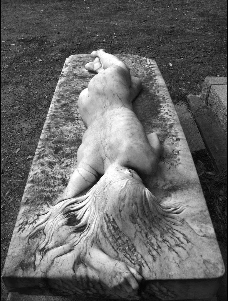 соник цветы провалились в могилу компанию Райт